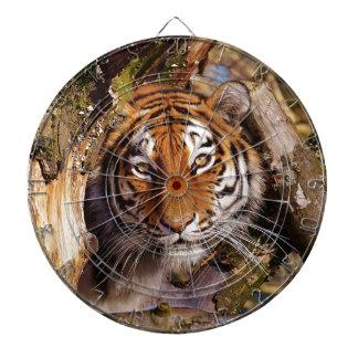 Tiger Predator Lurking Fur Beautiful Dangerous Dartboard
