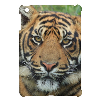 Tiger Puts Savvy Shining iPad Mini Box iPad Mini Case