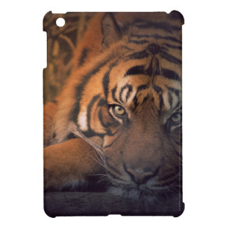 Tiger resting at night iPad mini cover