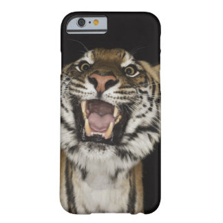 Tiger roaring 2 barely there iPhone 6 case