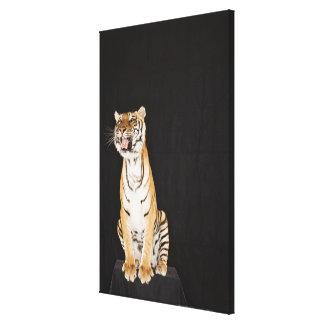 Tiger roaring canvas prints