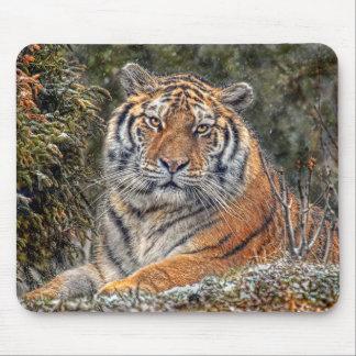 Tiger Royal Mousepad