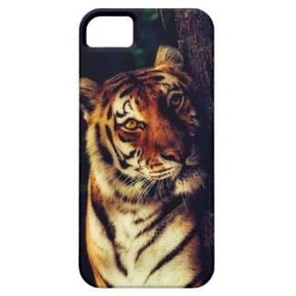 Tiger' S Touch Case For The iPhone 5