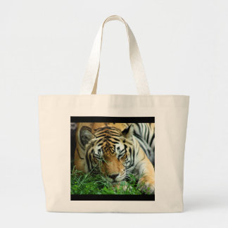 Tiger Sleeping in grass Tote Bag