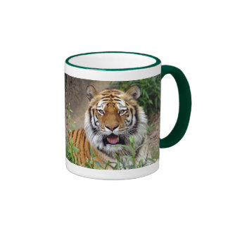 Tiger Smile Ringer Mug