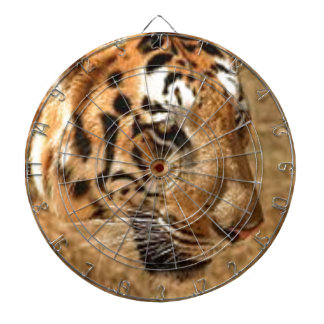 Tiger Stalking in India Dartboard