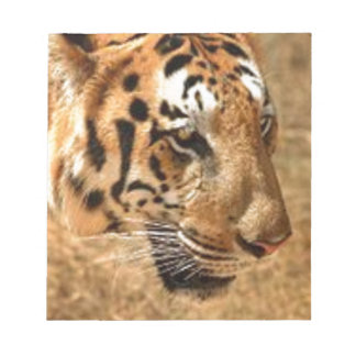 Tiger Stalking in India Notepad