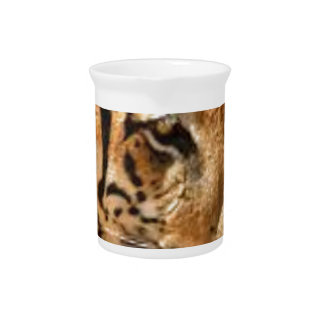 Tiger Stalking in India Pitcher