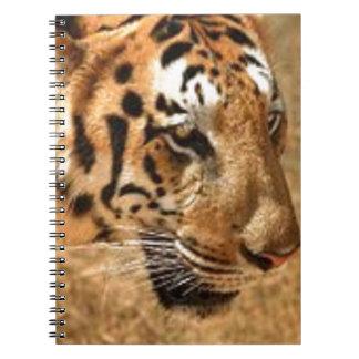 Tiger Stalking in India Spiral Notebook