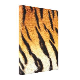 Tiger Stripes Canvas Prints