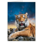 Tiger Sunset Note Card