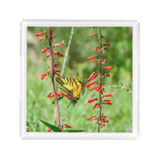 Tiger Swallowtail Butterfly and Wildflowers Acrylic Tray
