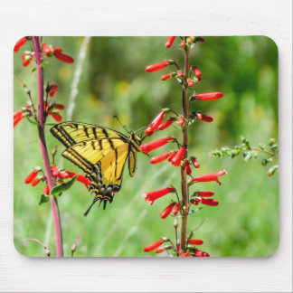 Tiger Swallowtail Butterfly and Wildflowers Mouse Pad