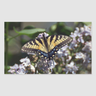 Tiger Swallowtail Butterfly Rectangle Sticker
