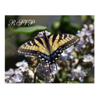 Tiger Swallowtail Butterfly Wedding RSVP Postcard