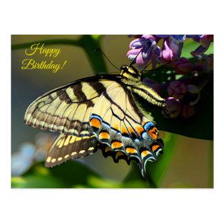 Tiger Swallowtail Happy Birthday Postcard