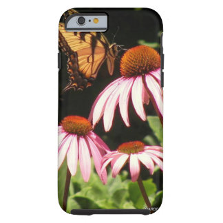Tiger Swallowtail Iphone 6 Case