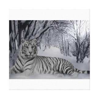 Tiger tales of a winters night stretched canvas prints