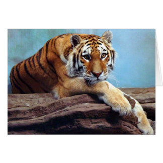 "Tiger ""Thinking of You"" Greeting Card"