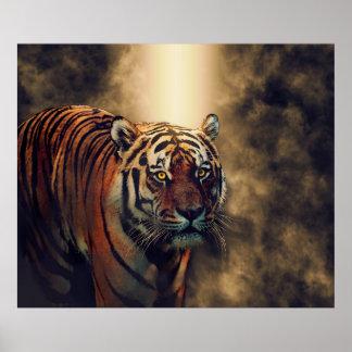 Tiger Tiger Eyes Burning Bright Poster