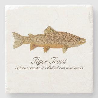 Tiger Trout Coaster Stone Coaster
