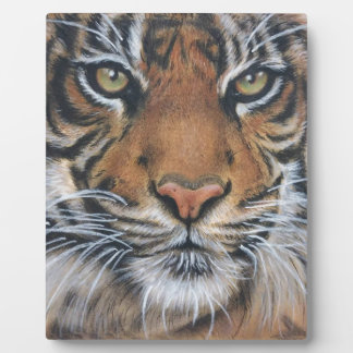 Tiger Wildlife Animal art Plaque