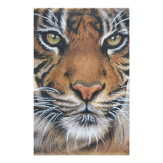 Tiger Wildlife Animal art Stationery