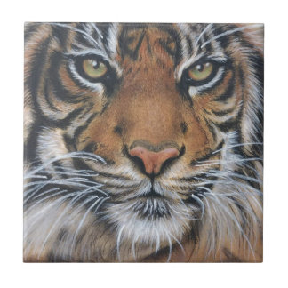 Tiger Wildlife Animal art Tile