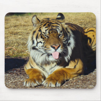 Tiger with a 'tude Mousepad
