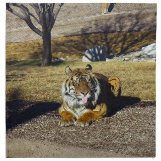 Tiger with a 'tude napkin