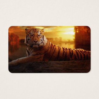 Tiger with Sunset Business Card