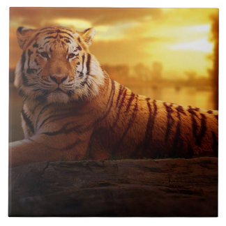 Tiger with Sunset Ceramic Tile