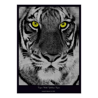 Tiger With Yellow Eyes Poster
