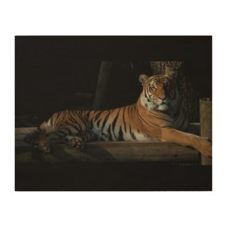 Tiger Wood Panel Wood Canvas