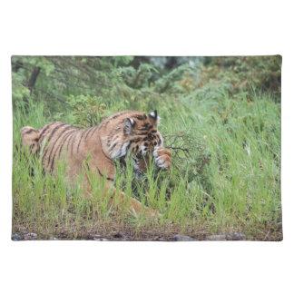 Tigeriffic Placemat