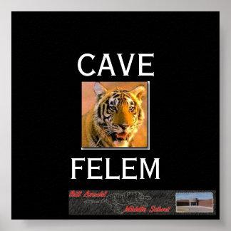 Tigernew, banner1, CAVE, FELEM Poster