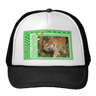 tigers-3-st-patricks-0014 trucker hats
