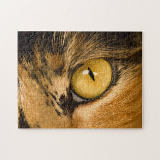 Tiger's eye 27.9 x 35.6 photograph puzzle with gif