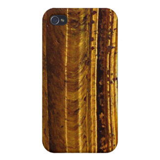 Tiger's Eye Art Speck iPhone 4 Case
