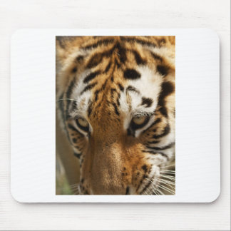 Tiger's Eyes Mouse Pad