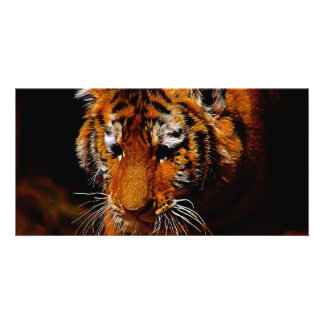 Tigers eyes personalized photo card