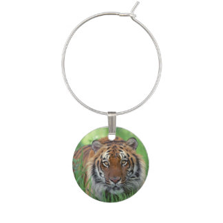 Tigers Eyes Wine Glass Charms