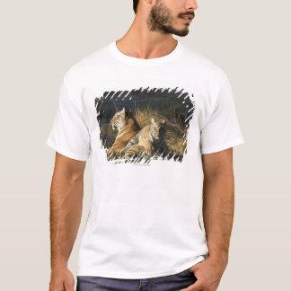 Tigers (Panthera tigris) cub lying on his T-Shirt