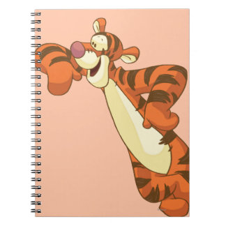 Tigger 3 notebooks