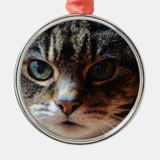Tiggy. Christmas Ornament