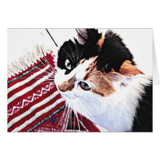 Tiggy Stardust - Cat photo Greeting Card
