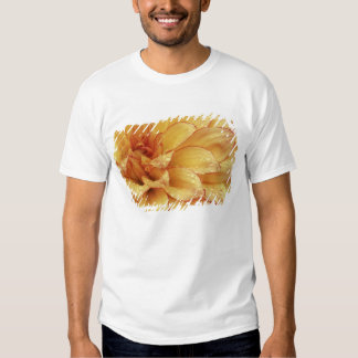 Tight in photographs of Dalhia flower with the 2 Tshirts