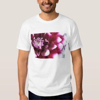 Tight in photographs of Dalhia flower with the Tee Shirt
