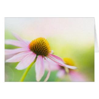 Til Sunbeams Find You Greeting Card