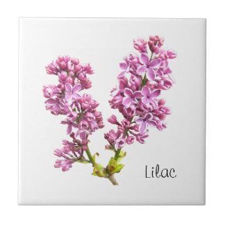 Tile - Lilac